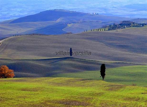 Foto 3/5 per rif. V 992020 Fattoria toscana