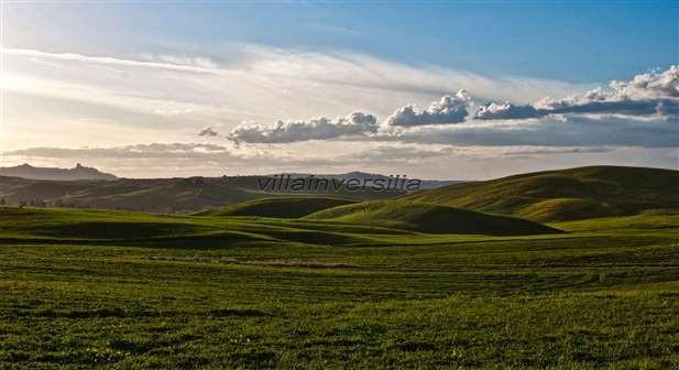 Foto 4/5 per rif. V 992020 Fattoria toscana