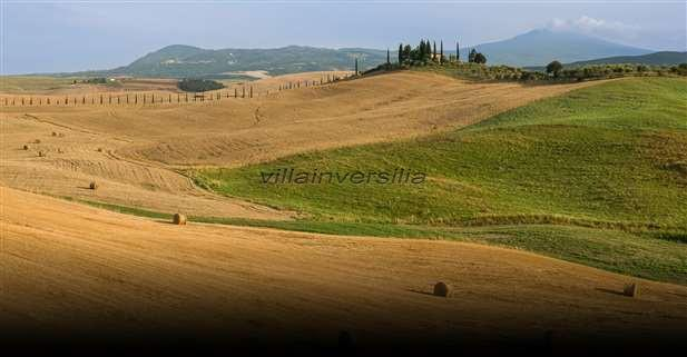 Foto 2/5 per rif. V 992020 Fattoria toscana