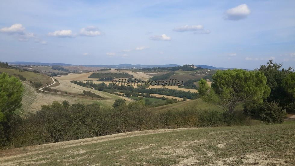 Photo 1/2 for ref. V1002020 terreno Montalcino