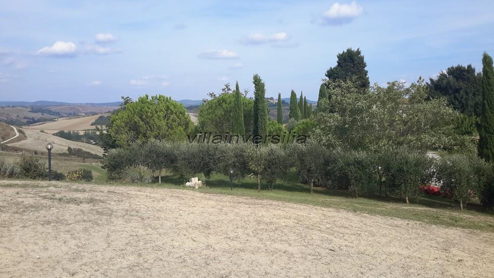 Photo 2/2 for ref. V1002020 terreno Montalcino