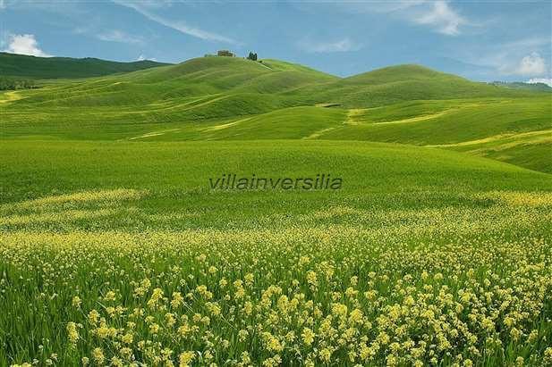 Terreno agricolo a Castiglione d'Orcia