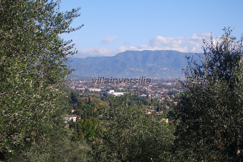 Foto 8/23 per rif. V 32021 villa colline Lucca