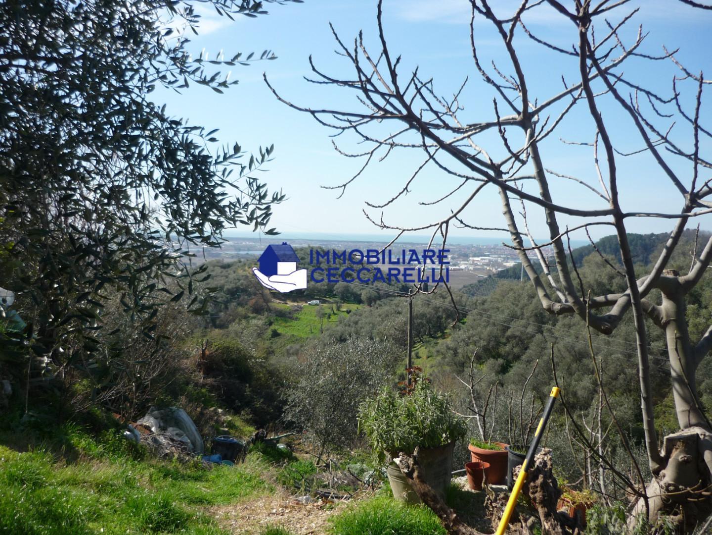 Foto 7/7 per rif. V 8309  rustico collina
