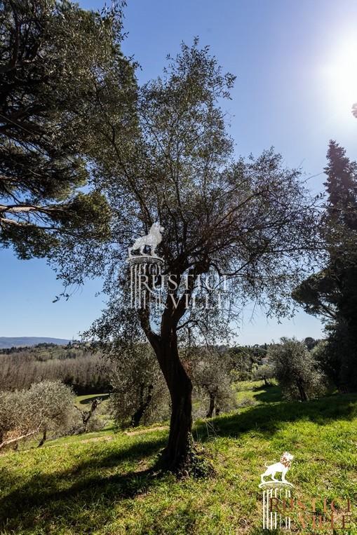Villa on sale to Pisa (16/143)