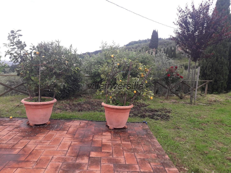 Foto 10/24 per rif. V 222021 rustico collina Toscana