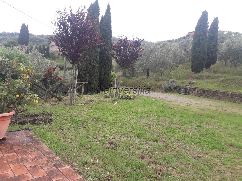 Foto 9/24 per rif. V 222021 rustico collina Toscana