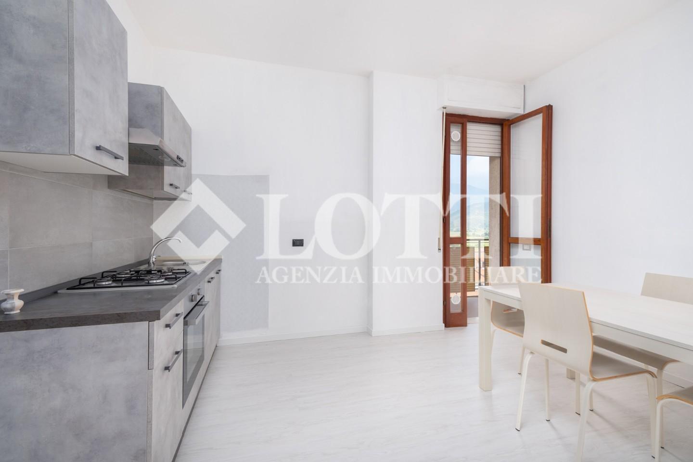 Appartamento in affitto, rif. 769