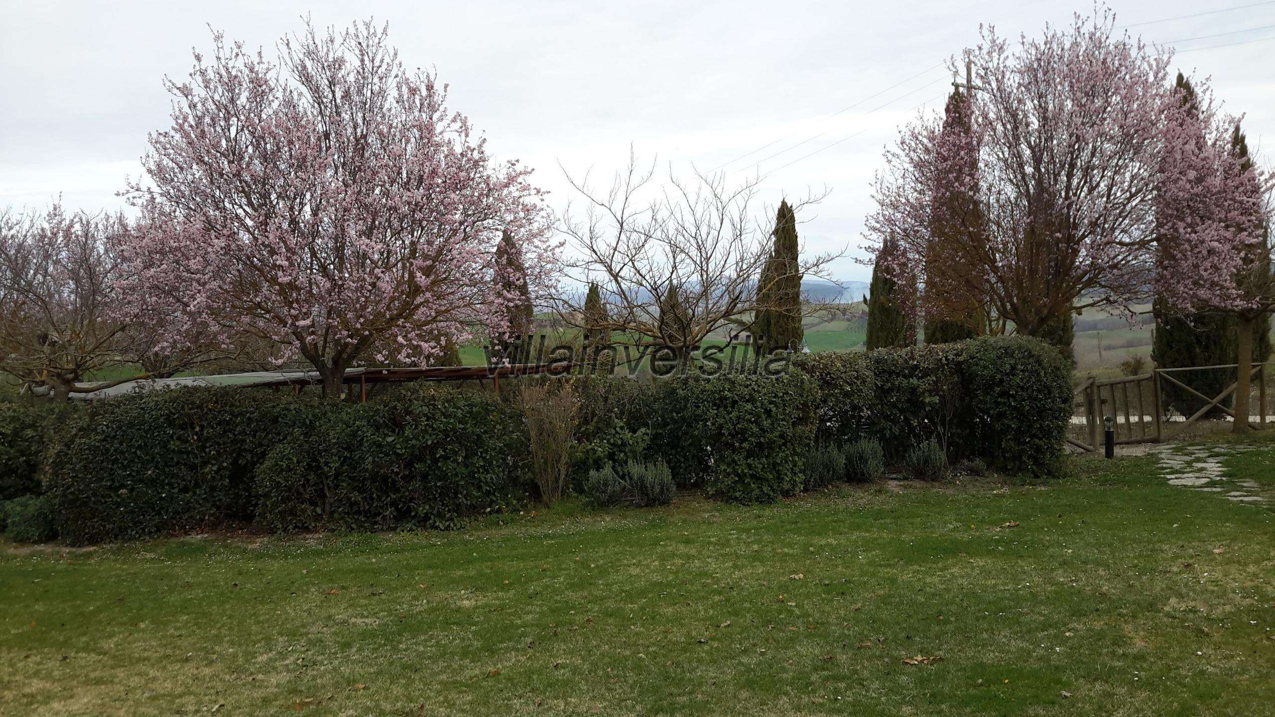 Foto 13/15 per rif. V 272021  agriturismo Toscana