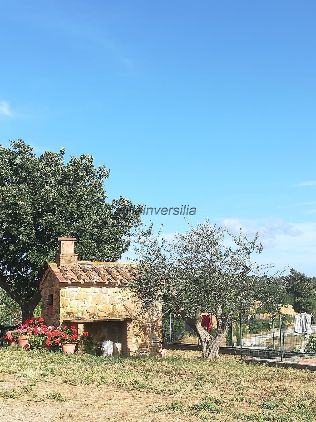 Foto 5/12 per rif. V 362021   casale Manciano