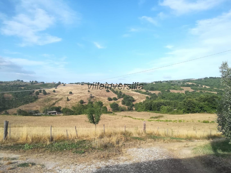 Foto 3/12 per rif. V 362021   casale Manciano