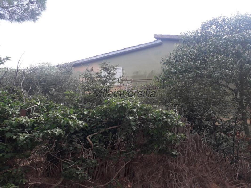 Foto 3/6 per rif. V 372021 casale Manciano