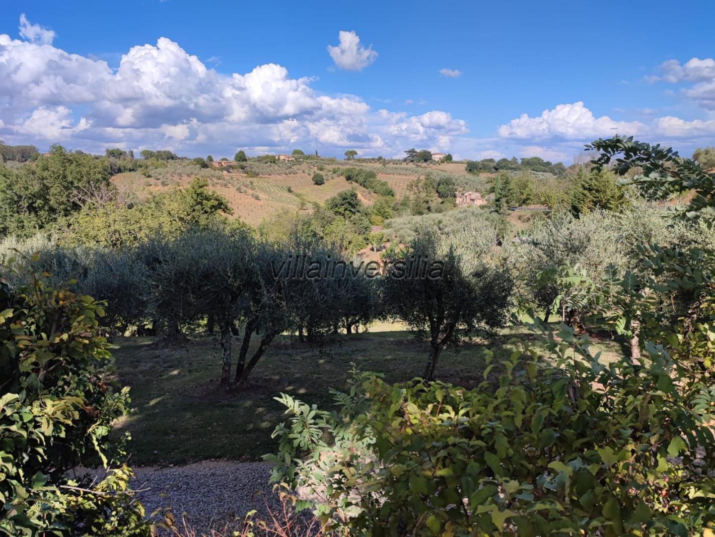 Foto 8/8 per rif. V 432021  rustico Siena