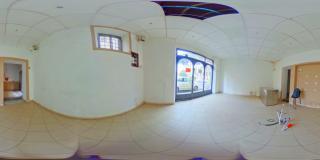 Foto 11 per rif. 1334v