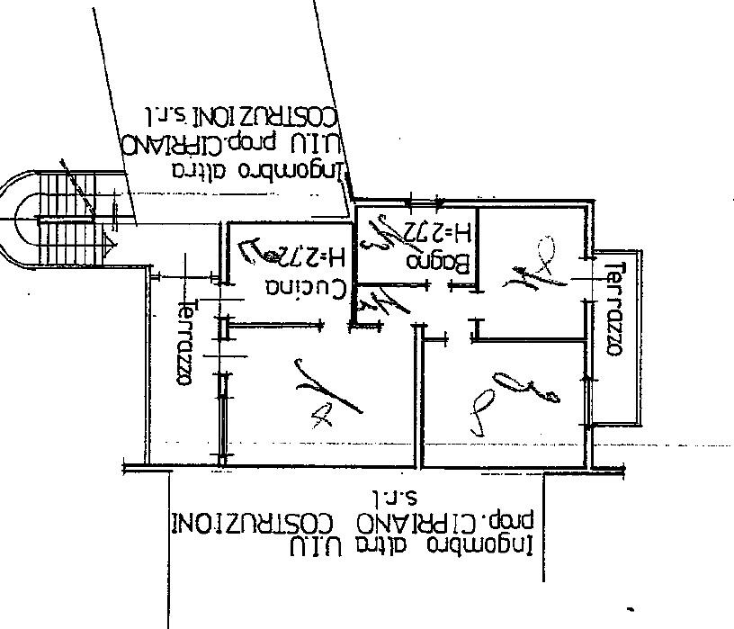 Planimetria 1/1 per rif. SITO50397