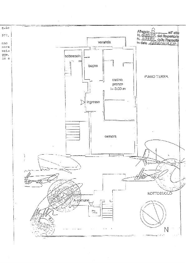 Planimetria 1/1 per rif. CAS1
