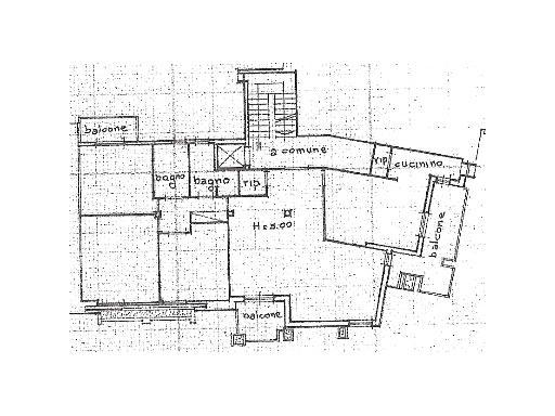 Planimetria 1/1 per rif. 1/3182