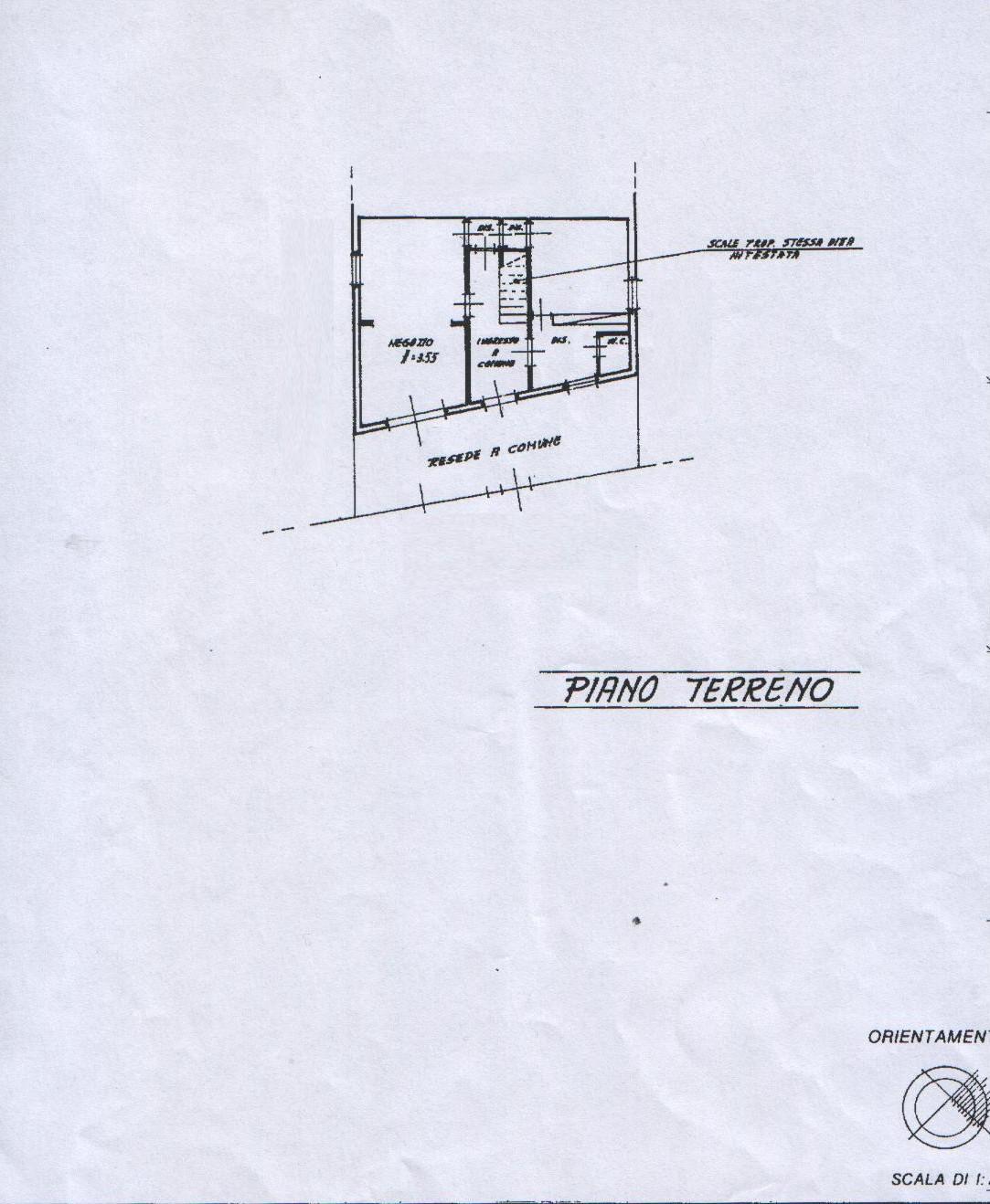 Planimetria 2/4 per rif. 8019