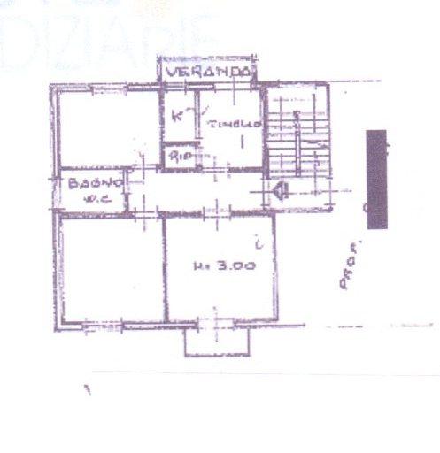 Planimetria /1 per rif. 333