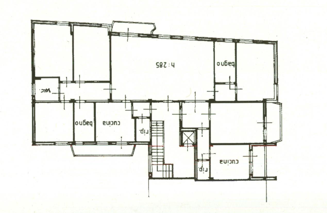 Planimetria 1/1 per rif. 981