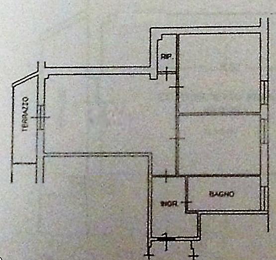Planimetria 1/1 per rif. A951