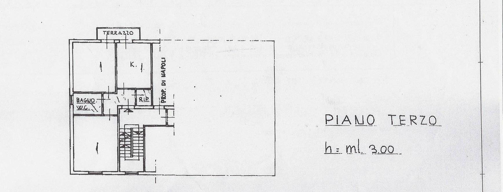 Planimetria 1/1 per rif. 1850